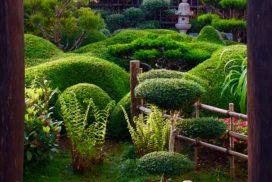 creation réalisation conception jardins japonais esprit zen