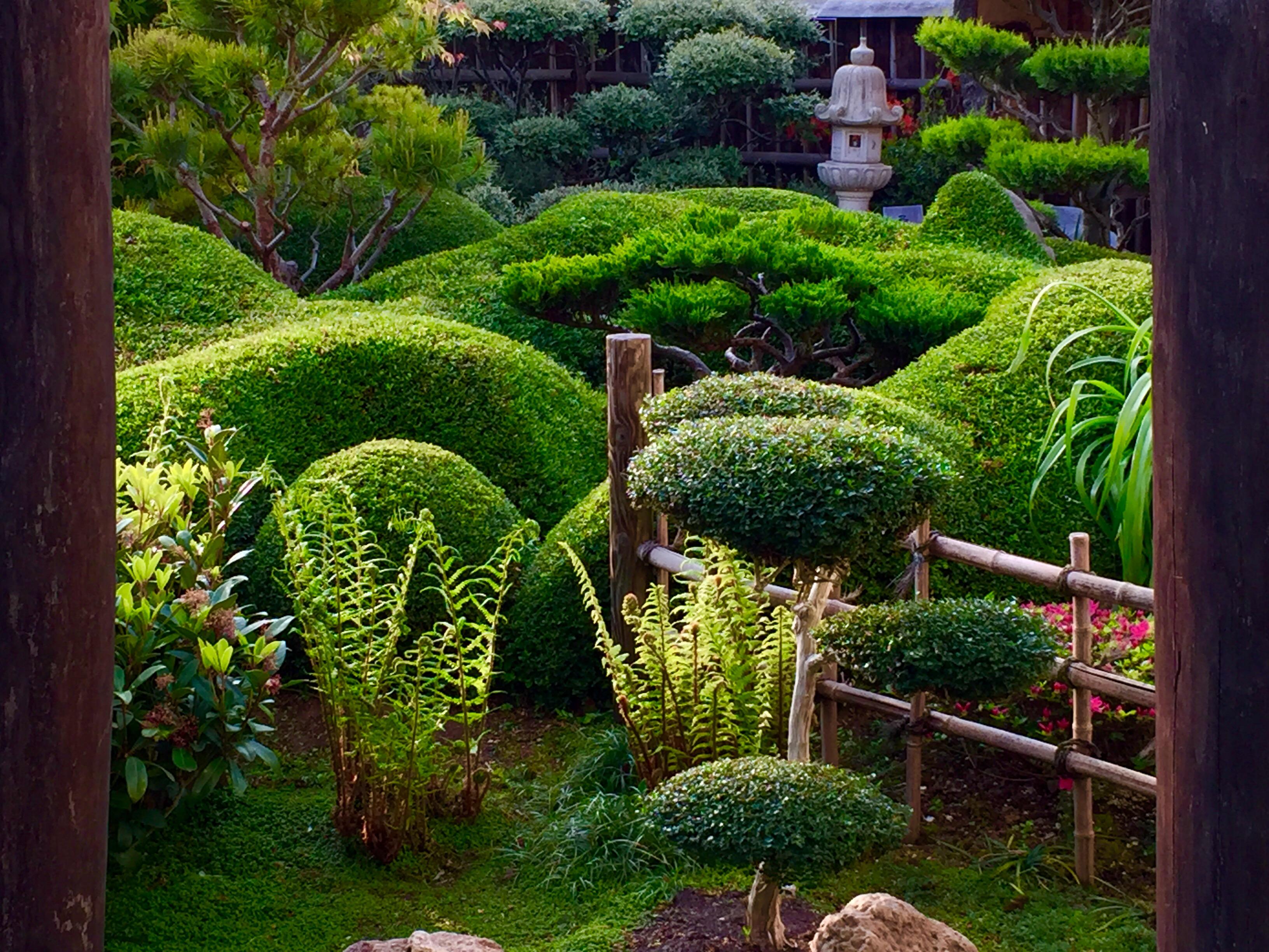 Jardin Mineral Zen Photo esprit zen kindle - bengali adventure books pdf free download